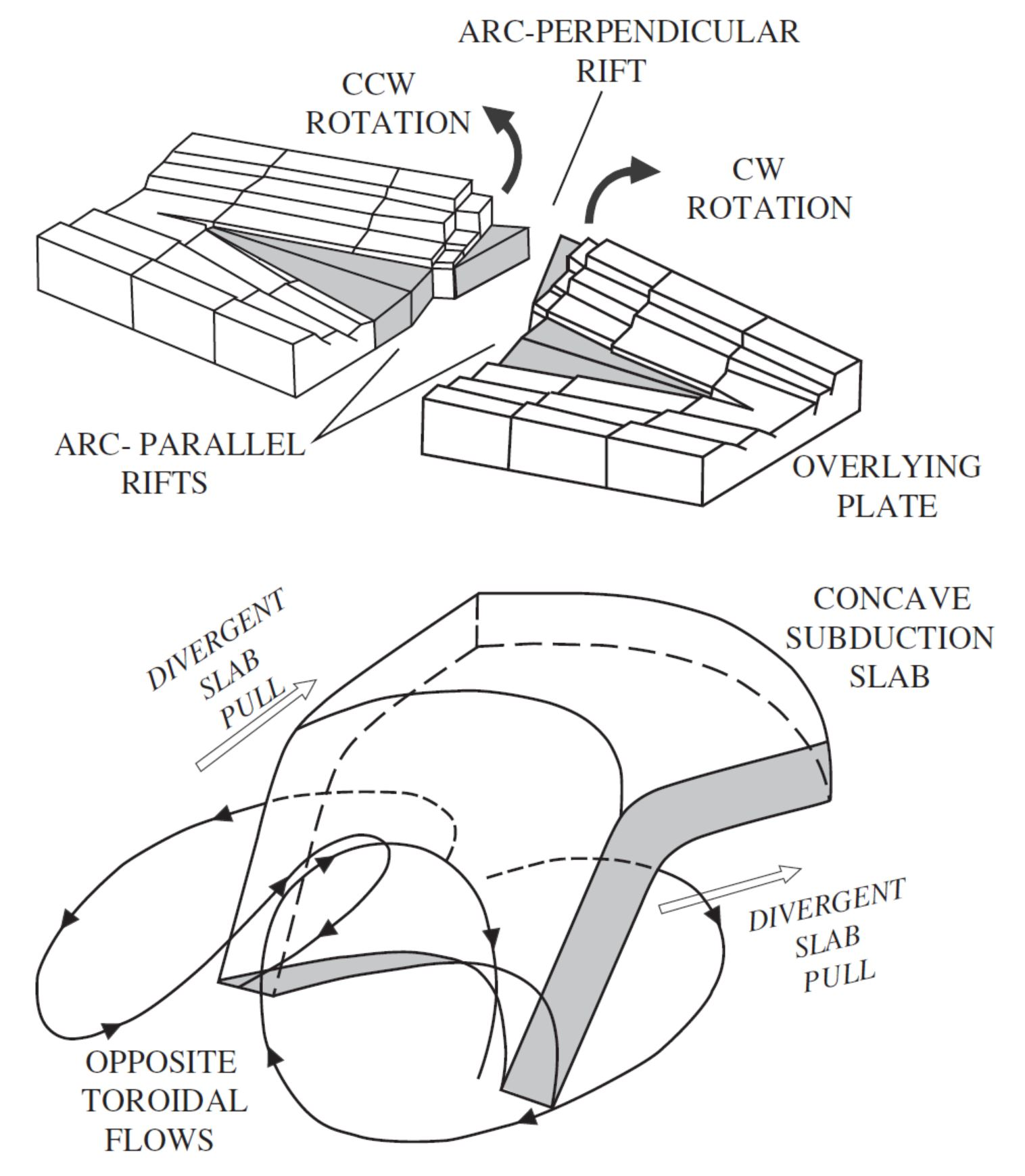 jay patton online the center body and range of technically Honeymoon in Fiji proposed geodynamic mechanism for concave slab under the nfb rollback induces slab curvature and opposite toroidal flows with upwelling and downwelling
